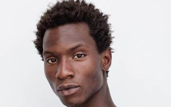 Adonis Bosso net worth, salary, income, earnings