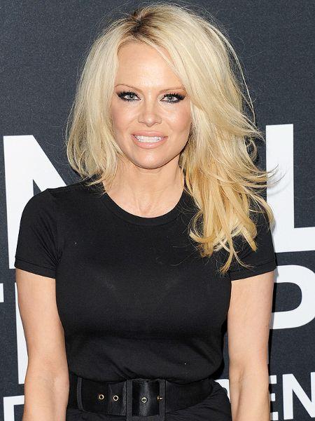 Pamela Anderson career