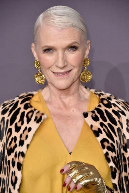 Maye Musk career