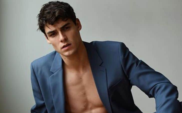 Rafael Miller age, height, body, career, net worth