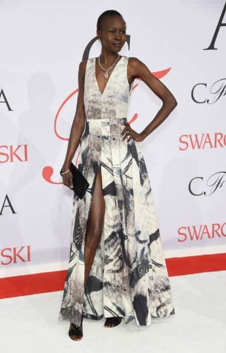 Alek Wek's age and height